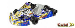 Picture for category Karts